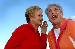 On-Line Dating for Seniors